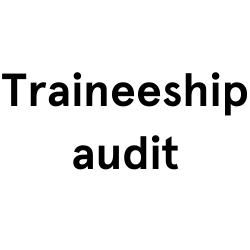 Traineeship audit